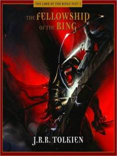 FELLOWSHIP OF THE RING 5