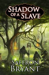 shadow of a slave